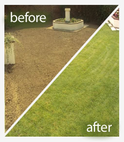 Lawn fertiliser treatment in Reading